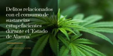 """Consumo de Cannabis durante el """"Estado de Alarma"""""""